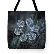 Icy Jewel Tote Bag by Alexey Kljatov