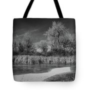 Icy Marsh Tote Bag