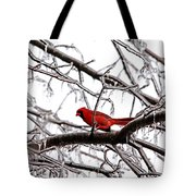 Icy Perch Tote Bag