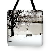 Icy Pond Tote Bag
