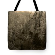 Icy Trees In Sepia Tote Bag