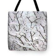 Icy Winter Scene Tote Bag