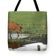 Idaho Farm Horse 2 Tote Bag
