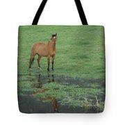 Idaho Farm Horse1 Tote Bag