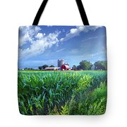 If Seasons All Were Summers Tote Bag