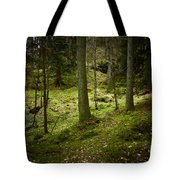 If You Go Down..................... Tote Bag