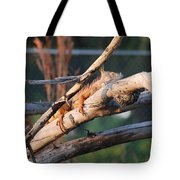 Igauna On A Stick Tote Bag