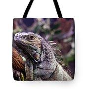 Iguana 338 Tote Bag