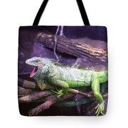 Iguana 339 Tote Bag