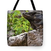 Iguana At Talum Ruins Mexico 2 Tote Bag