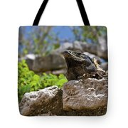 Iguana At Talum Ruins Mexico Tote Bag