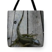 Iguana At The Ready Tote Bag