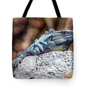 Iguana In Ek Balam Tote Bag