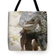 Iguana On A White Sand Beach Up Close Tote Bag