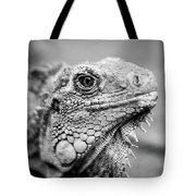 Iguana Stardust Tote Bag