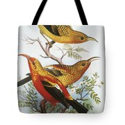 IIwi Tote Bag by Hawaiian Legacy Archive - Printscapes