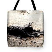 Ilimonoloth Tote Bag