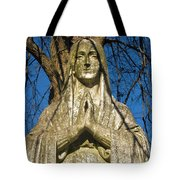 I'll Just Blend In - Hail Mary  Tote Bag