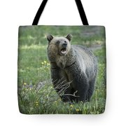 I'll Only Say This Once Tote Bag by Sandra Bronstein