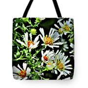 Illinois Wildflowers 3 Tote Bag