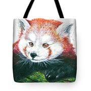 Illlustration Of Red Panda On Branch Drawn With Faber Castell Pi Tote Bag
