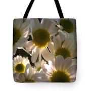 Illuminated Daisies Photograph Tote Bag