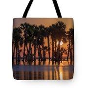 Illuminated Palm Trees Tote Bag