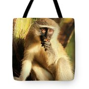 Illuminated Vervet Monkey  Tote Bag