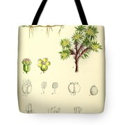 Illustrations Of The Flowering Plants And Ferns Of The Falkland Tote Bag