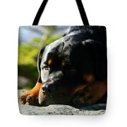 I'm Bored Rottie Tote Bag