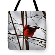 I'm Feeling Rather Red Today Tote Bag