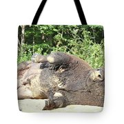 Give Me A Minute, I Know I Can Rollover Tote Bag