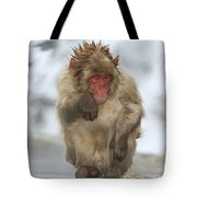 I'm Just Cold Tote Bag