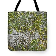I'm Not Here, You Don't See Me Tote Bag