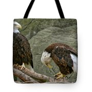 I'm Sorry Tote Bag by Michael Peychich