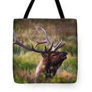 I'm Talking To You.  Tote Bag