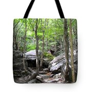 Image Included In Queen The Novel - Rocks At Smugglers Notch Tote Bag