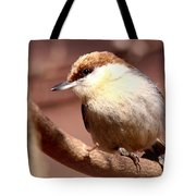 Img_0001 Brown-headed Nuthatch Tote Bag