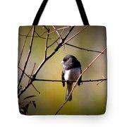 Img_0001 - Dark-eyed Junco - Snowbird Tote Bag