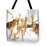 Img_0001 - Mourning Dove Tote Bag