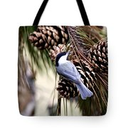 Img_0215-022 - Carolina Chickadee Tote Bag