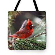 Img_0565-004 - Northern Cardinal Tote Bag