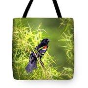 Img_0841-003 - Red-winged Blackbird Tote Bag