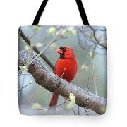 Img_0999-001 - Northern Cardinal Tote Bag
