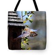 Img_1753-001 - Eastern Bluebird Tote Bag