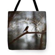 Img_2287 - Eastern Bluebird Tote Bag