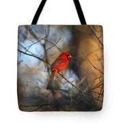 Img_2866-001 -  Northern Cardinal Tote Bag