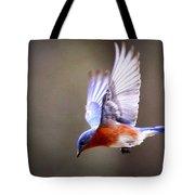 Img_4139-003 - Eastern Bluebird Tote Bag