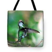 Img_4595-004 - Ruby-throated Hummingbird Tote Bag
