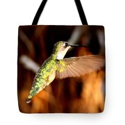 Img_4625 - Ruby-throated Hummingbird Tote Bag